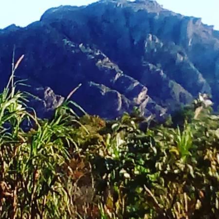 montanha-verde